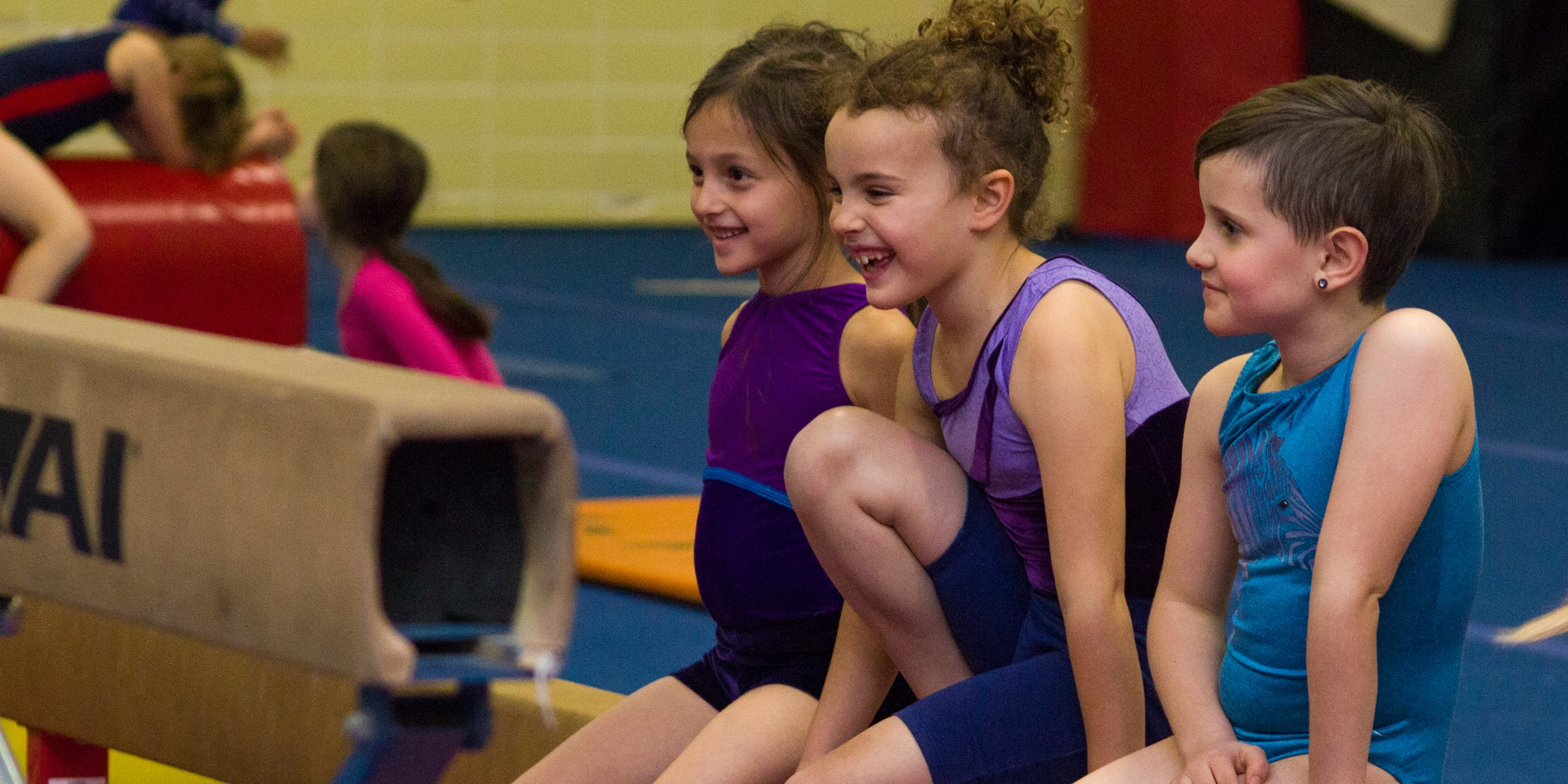 Recreational Gymnastics Classes Begin September 18!